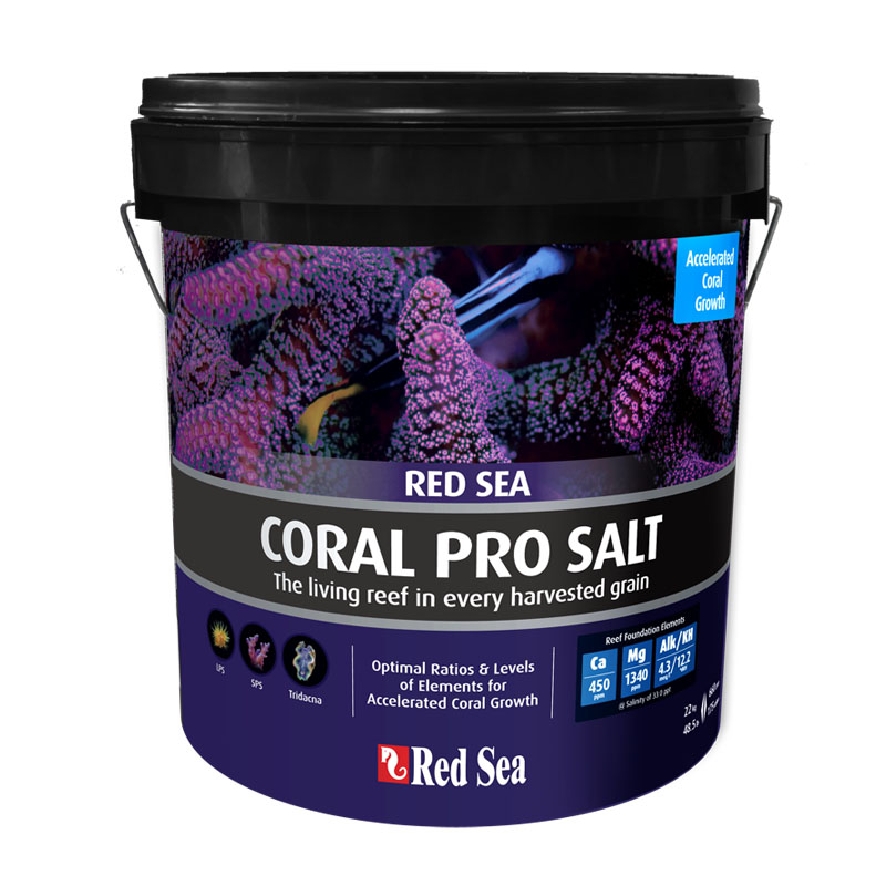 CORAL PRO SAL
